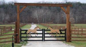 HORSE DRIVE GATE
