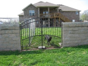 DOUBLE DOG GATE
